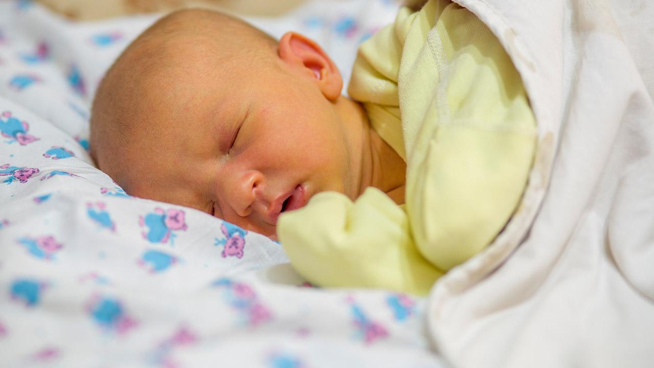 تاثیر شیر مادر بر هوش