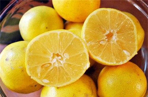مصرف لیمو شیرین در دوران بارداری