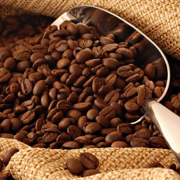 قهوه ی عربیکا یا ربوستا ؟ کدام بهتر است ؟